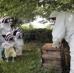 Beekeeper shows dads and children a hive