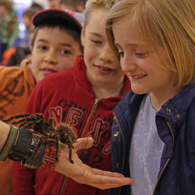 Children watch fascinated by a tarantula crawling up a man's arm